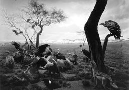 Japanese photographer Hiroshi Sugimoto in conversation tonight from 7pm at The Getty...