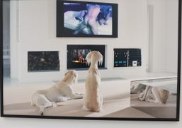 """Philip-Lorca diCorcia """"East of Eden"""" at David Zwirner, New York"""