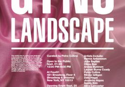 Gynolandscape, curated by Petra Collins, opening tomorrow from 8pm-12am at Four81, New...