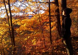 Jennifer Pastore on an autumnal walk in Catskills, New York. Photo Sabine…