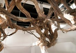 Baitogogo, a Gordian Knot, playing with Palais de Tokyo's architecture from Brazilian…