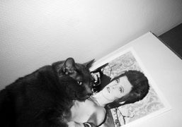 My cat Yoko having a nap on David Bowie at Purple Institute,…