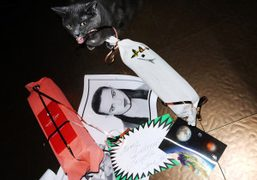 My catYokoplaying with Katja Rahlwes's presents for Purple, at the Purple office,…