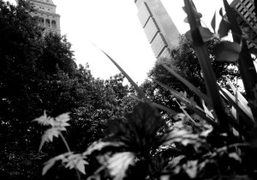 A view from Madison Square Park, New York. Photo Olivier Zahm