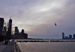 The last sunset of 2012 over New York City. Photo Juliana Balestin