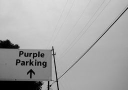 A picture sent to Purple Diary from Los Angeles. Photo Dustin A….