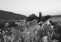 View from the house, Agios Petros, Tinos. Photo Olivier Zahm__