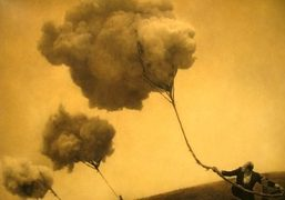 THE ARCHITECT'S BROTHER BY ROBERT AND SHANA PARKEHARRISON at jack shainman gallery,...