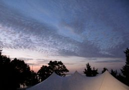 The tent where we all slept at Dash Snow's grandmother's house, Sag…