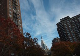 A beautiful fall day in New York. Photo Olivier Zahm
