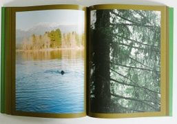 """A view of Sam Falls """"Resonance"""" book published by Mousse Publishing"""